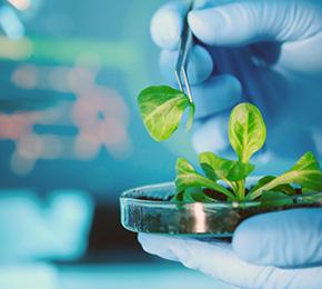 Ciências Biológicas 2. 0 - Licenciatura