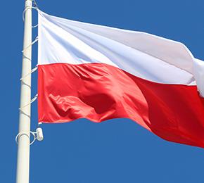 Polonês