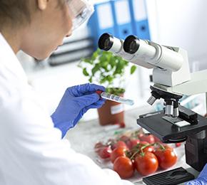 Microbiologia dos Alimentos, Higiene, Legislação Alimentos