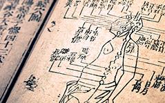 Introdução às Bases da Medicina Tradional Chinesa